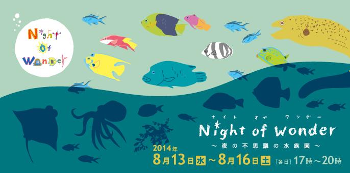 Night of Wonder バナー