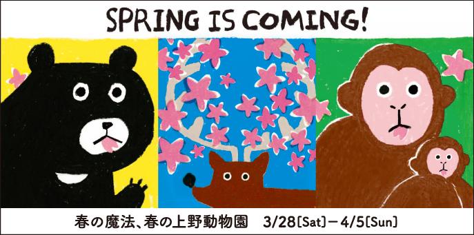春の魔法、春の上野動物園!