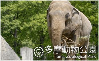「多摩動物園」の画像検索結果